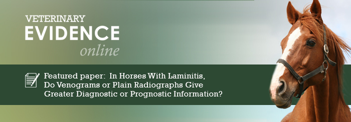 In Horses With Chronic Laminitis, Do Venograms Compared to Plain Radiographs Give Greater Diagnostic or Prognostic Information?