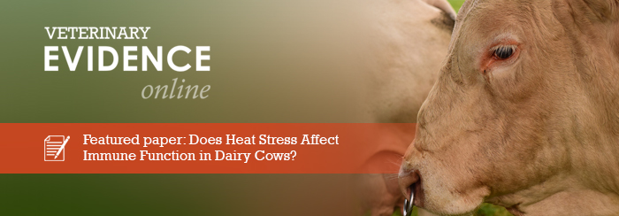 Does Heat Stress Affect Immune Function in Dairy Cows?