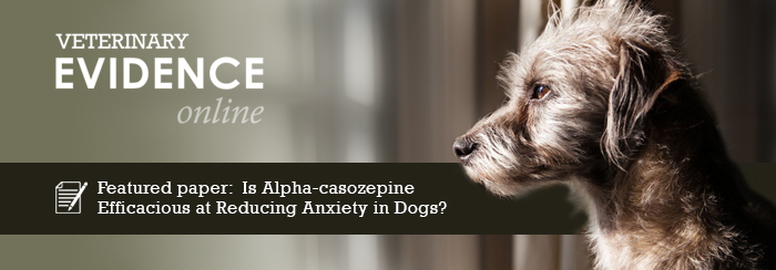 Is Alpha-casozepine Efficacious at Reducing Anxiety in Dogs?