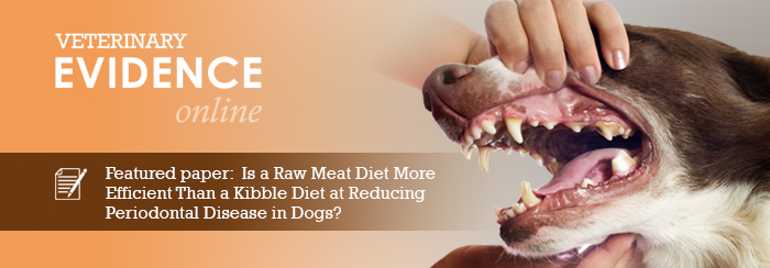 Is a Raw Meat Diet More Efficient Than a Kibble Diet at Reducing Periodontal Disease in Dogs?