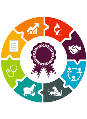 RCVS Knowledge grant bursary logo