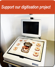 Digitisation Project Appeal