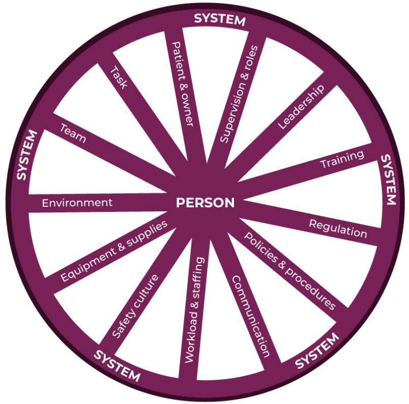 Human factors wheel, adapted from the London Protocol and RCVS Knowledge Contributory Factors Checklist