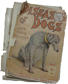 Disease of Dogs
