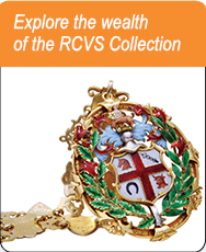 Explore the wealth of the RCVS Collection