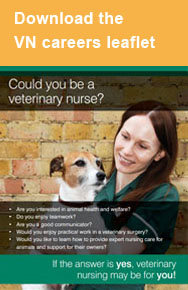 Veterinary nursing careers leaflet